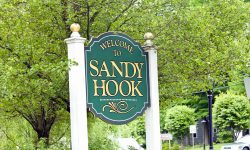 7 Lessons Learned from the Sandy Hook School Shooting