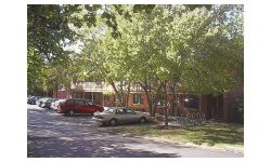 Read: Univ. of Missouri Settles Lawsuit After Fatal Walkway Collapse