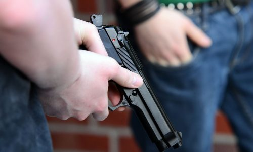 Study Finds Guns Lead to More Violent Protests
