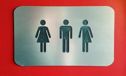 Read: Judge Rejects Injunction to Ban Transgender Girl from Female Restrooms
