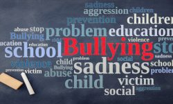 Read: How this Colorado School District Plans to Beat Bullying