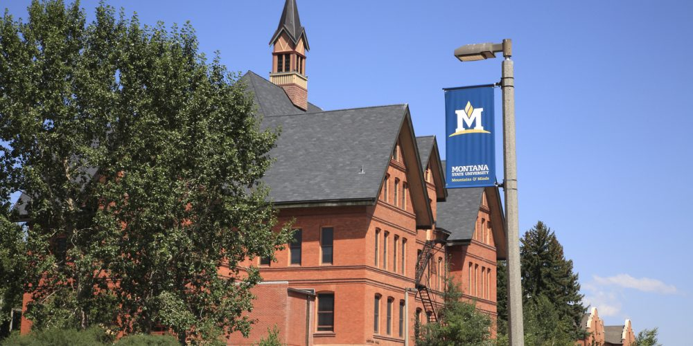 Montana State University Settles Sexual Assault Lawsuit for $175,000