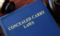 Concealed Carry Laws and Permit Numbers by State