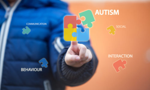 Interacting with Autism: A School Resource Officer Approach