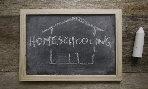 Mom to Homeschool Teen Accused of Plotting Lehigh Acres School Shooting